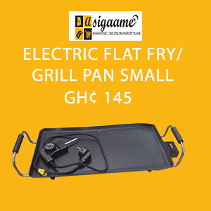 ELECTRIC FLAT FRY SMALLJPG 1525694976